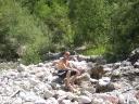Davide al torrente